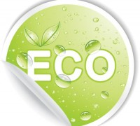 make your car eco-friendly
